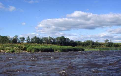 Озеро Воже - Свидь - озеро Лаче - Онега